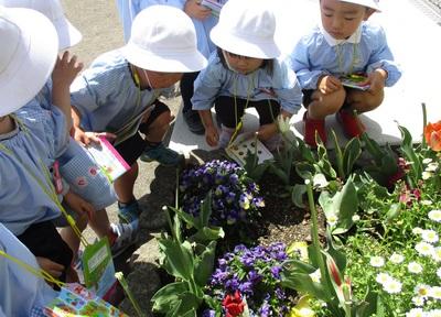 園庭探検2.JPG